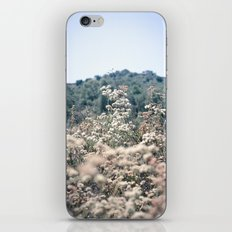 Buckwheat Afternoon iPhone & iPod Skin