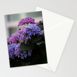 Big Hortensia flowers in front of a window Stationery Cards