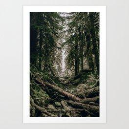 Into the Wild XVI Art Print