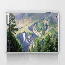 SWIFT CREEK HEADWATERS BELOW TABLE MOUNTAIN Laptop & iPad Skin