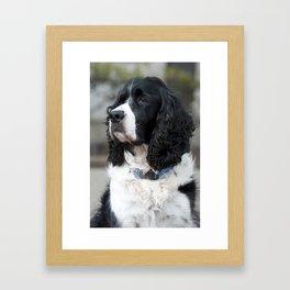 Wilbur Framed Art Print