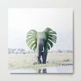Elephant + Leaf Metal Print
