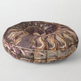 An Ancient Shell Floor Pillow