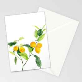 Lemon Branch Watercolor  Stationery Cards