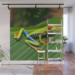 Green Tree Frog Red-Eyed Wall Mural