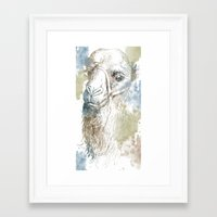 camel Framed Art Prints featuring Camel by Zen and Chic