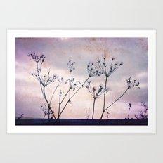 evening stars Art Print