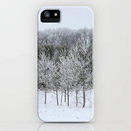 Beautiful Ice Storm iPhone Case