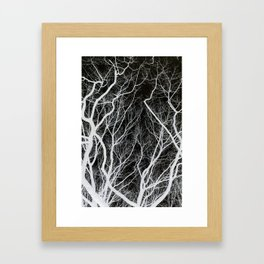 Abstract Tree Branches Framed Art Print
