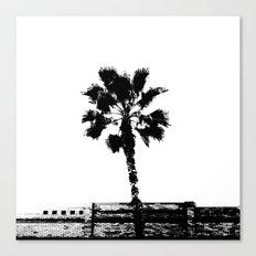 Black & White Palm Canvas Print
