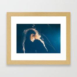 Dancing Jellyfish Framed Art Print