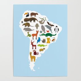 South America sloth anteater toucan lama bat fur seal armadillo boa manatee monkey dolphin Poster