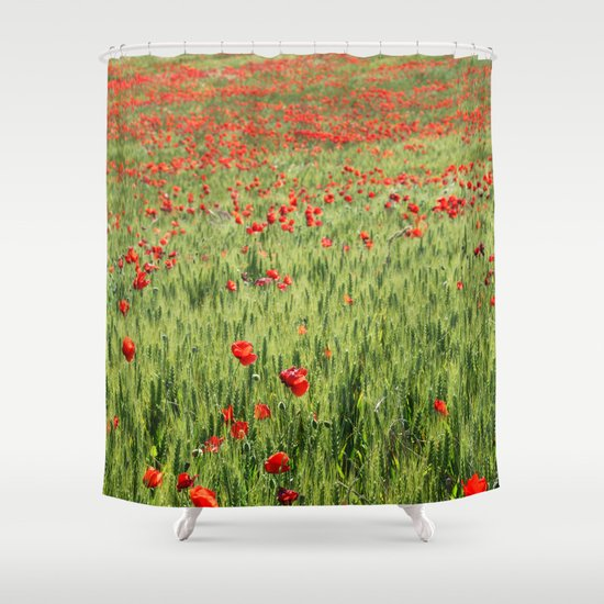 Poppies Red And Green Shower Curtain By Guido Montanes