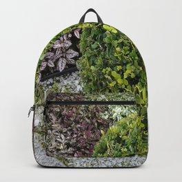 Bonsai Backpack