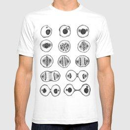 mitotis T-shirt