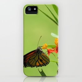 summer in India iPhone Case
