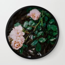 roses on film Wall Clock