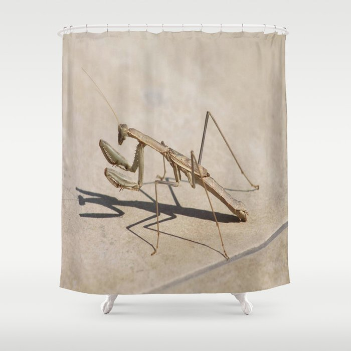 Praying Mantis And Shadow Shower Curtain By Taiche