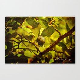 In the Garden - Blueberry Canvas Print