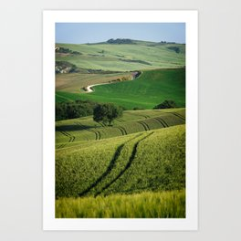 Curves and lines in the green fields of Tuscany Art Print