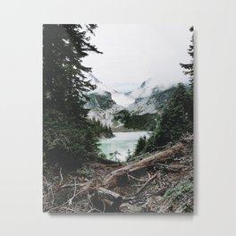 Into the Wild XIV / Washington Metal Print