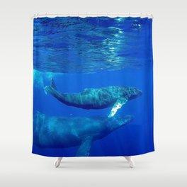 Underwater Humpbacks 7 Shower Curtain