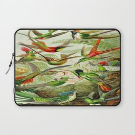 Kunstformen der Natur (Art Forms in Nature)a book of lithographic and halftones. Hummingbirds Laptop Sleeve