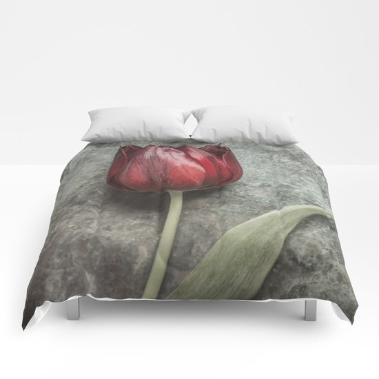 One Red Tulip Comforters