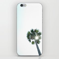 The Sole Palm iPhone & iPod Skin