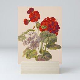 Geranium no. 5 - Ryan Charles, L. Prang & Co. - 1893 Mini Art Print