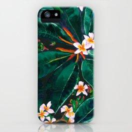 Frangipanis iPhone Case