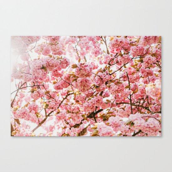 Simple Splendor Canvas Print