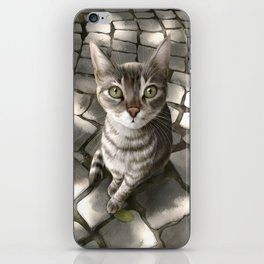 A Cat That I Once Knew iPhone Skin