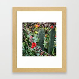 Red Flowers Over a Green Fence Framed Art Print
