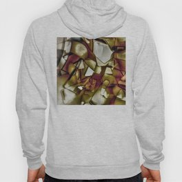 The obsolete shapes Hoody