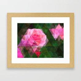 Pink Roses in Anzures 1 Art Triangles 1 Framed Art Print