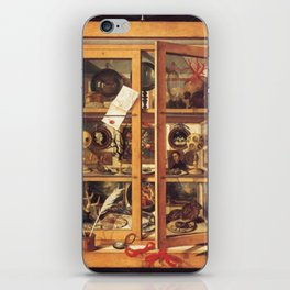 Cabinet of Curiosities iPhone Skin