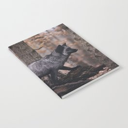 Silver Fox Notebook