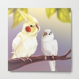 Budgie and Cockatiel Metal Print