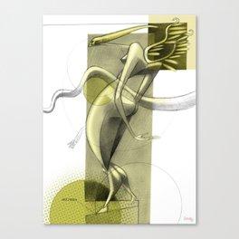De los vuelos | Of flights { n°_ 007 } Canvas Print