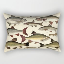 Vintage Illustration of Various Fishes (1902) Rectangular Pillow