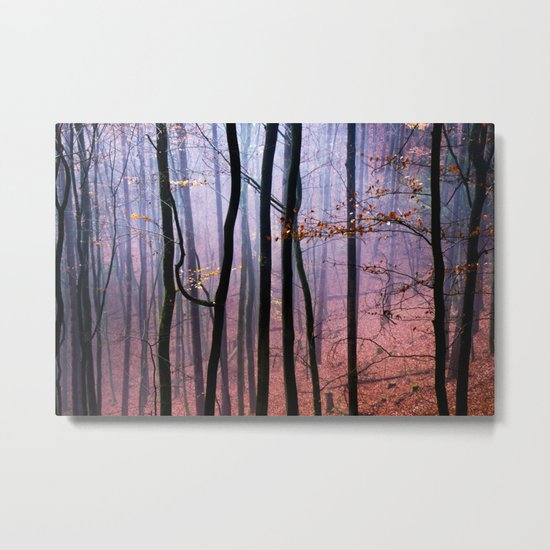 Foggy fall forest photography Metal Print
