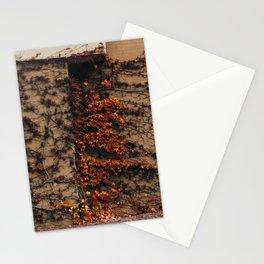 Petoskey & Vine Stationery Cards