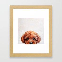 Toy poodle red brown Dog illustration original painting print Framed Art Print