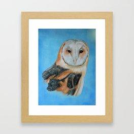 Barn Owl Portrait Framed Art Print