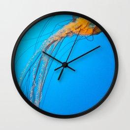 Animality: Jellyfish, Solo. Wall Clock