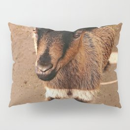 Gorgeous Goat Pillow Sham
