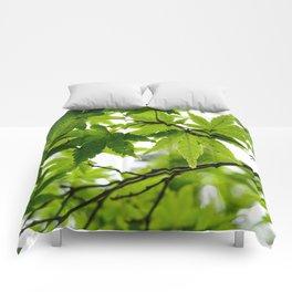 Kyoto Maple Comforters