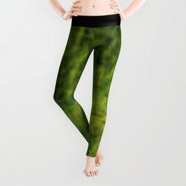 Abstract - Dark Green Leggings