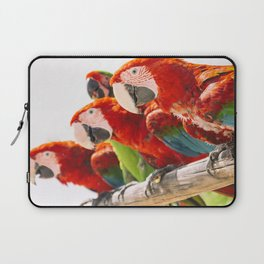 Red macaws Laptop Sleeve